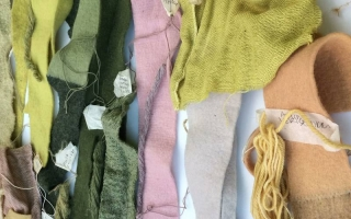 Lessons of Natural Dyeing